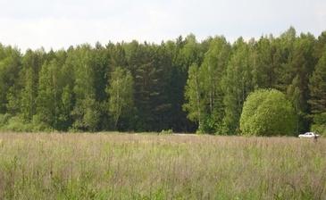 Елизарово-Park (Елизарово-Парк)