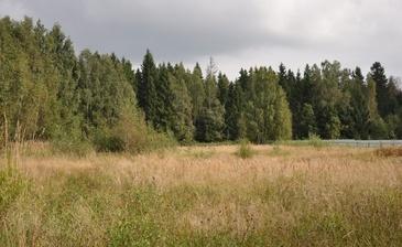 Ермолино парк