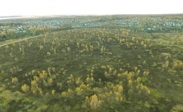 Подмосковный гектар