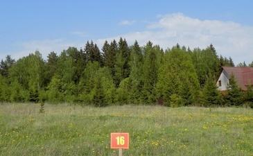 Петрухино-Дальнее