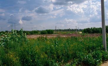 Лето-парк